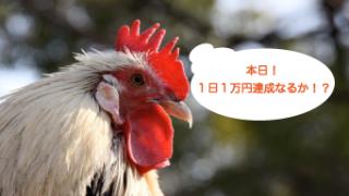 """""""大団円なるか!?勝てる!と確信できる理想的な相場状況の判断方法をご紹介!"""""""