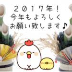 【謹賀新年】支えてくれるたくさんの方に感謝!新たな抱負を胸に2017年も前進します^^