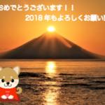 【2018年謹賀新年】今年も海外バイナリーオプション攻略法ブログをよろしくお願い致します^^!